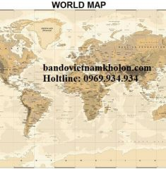Bản đồ thế giới Mẫu 42